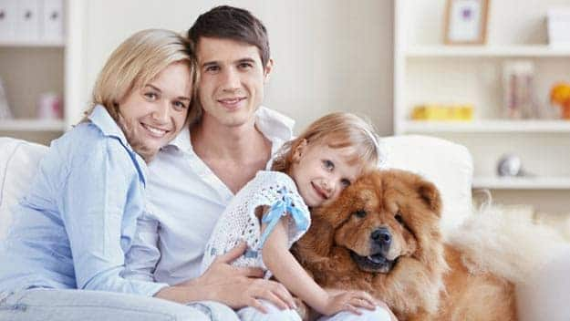 Wills & Trusts dog-young-family Direct Wills Bootle